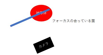 フォーカスロックの図示(カメラを振った場合)