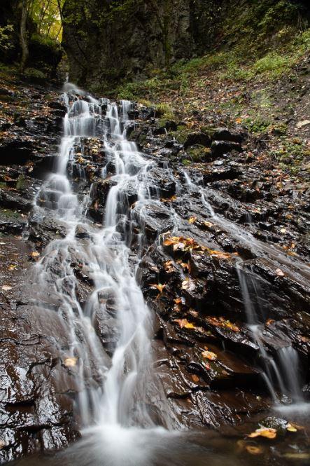 滝の元画像